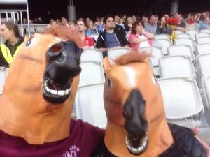 horses head - faye